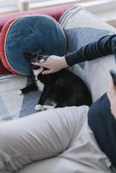 Man stroking cat while sitting on sofa at home - BOYF01925