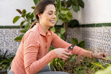 Smiling woman cutting plant with pruning shears in garden - AFVF08263