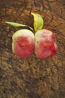Two ripe apples lying on wooden surface - SABF00068
