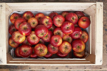 Crate of red ripe apples - SABF00071