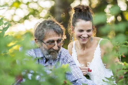 Deutschland, Hessen, Wiesbaden, Vater und Tochter pflücken Johannisbeeren im eigenen Garten, Familie, Nachhaltigkeit, bewusste Ernährung, Natur - AKLF00104